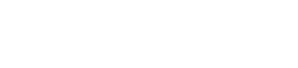Critical Applications Services